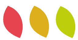 logo feuilles Sincera